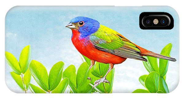 Bunting iPhone Case - Painted Bunting by Laura D Young