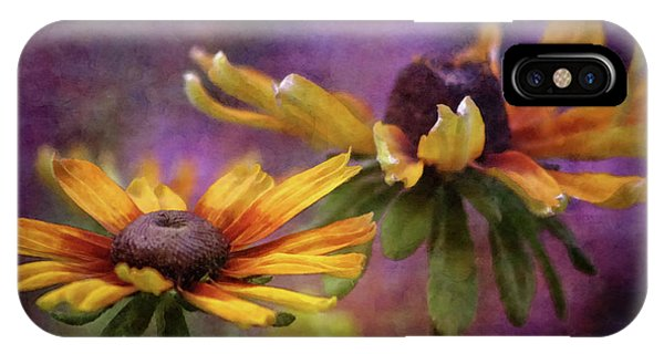 Painted By The Sun 2757 Idp_2 IPhone Case