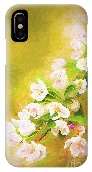 Painted Crabapple Blossoms In The Golden Evening Light IPhone Case