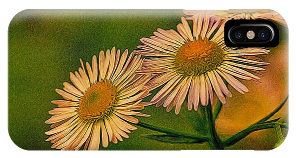 Painted Daisies 2 IPhone Case