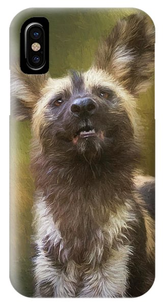 Painted Dog Portrait IPhone Case