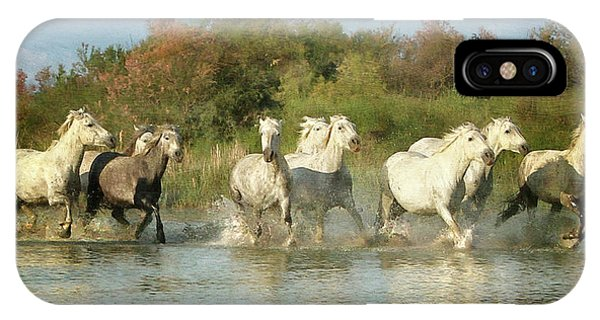 Painted Horses IPhone Case