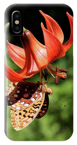 Painted Lady On Lily IPhone Case