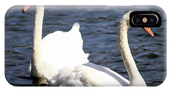 Painted Mute Swans Of Lake Junaluska North Carolina II IPhone Case