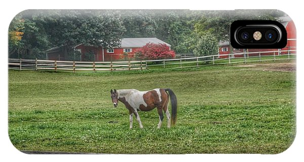1005 - Painted Pony In Pasture IPhone Case