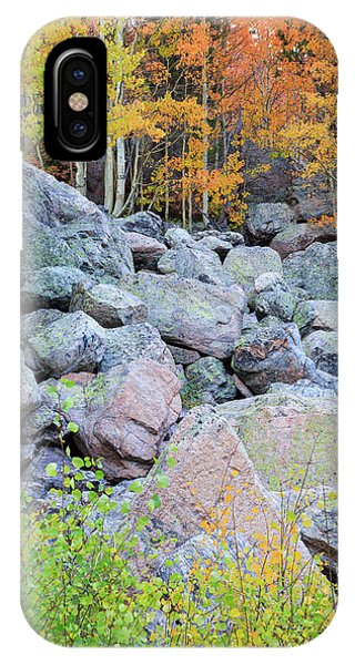 Painted Rocks IPhone Case