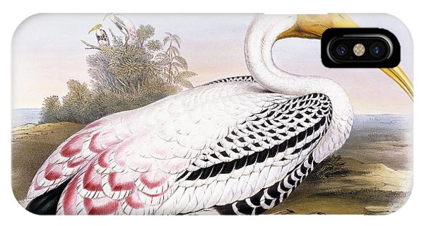 Painted Stork IPhone Case