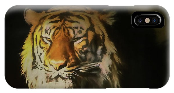 Painted Tiger IPhone Case