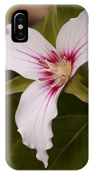 Painted Trillium II IPhone Case