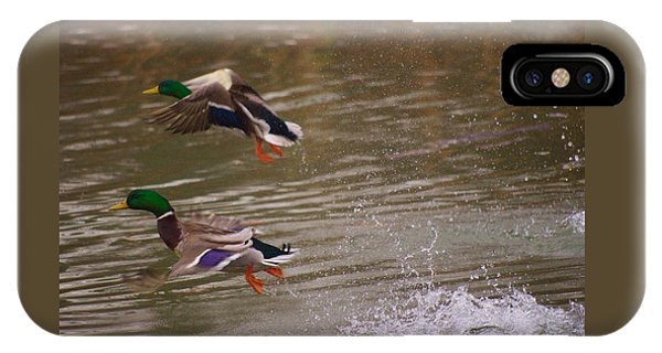 Pair Of Ducks IPhone Case