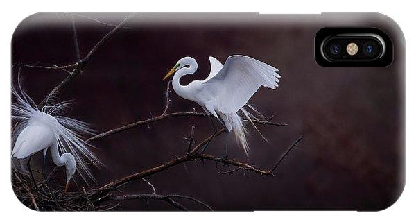 Pair Of Egrets IPhone Case