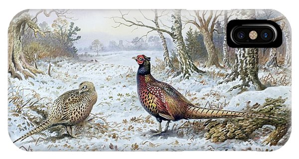 Fowl iPhone Case - Pair Of Pheasants With A Wren by Carl Donner