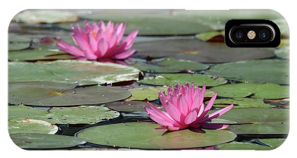 Pair Of Pink Pond Lilies IPhone Case