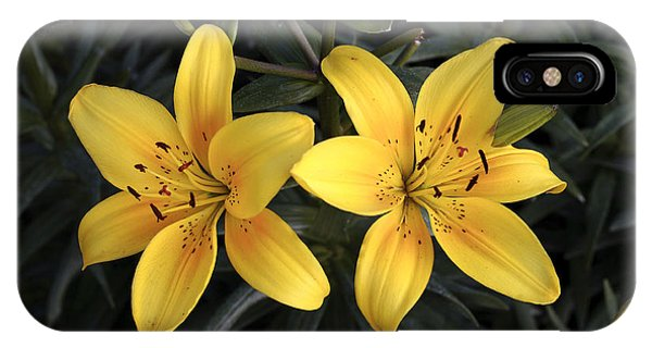 Pair Of Yellow Lilies IPhone Case