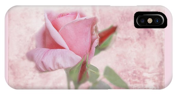Pale Pink Rose IPhone Case