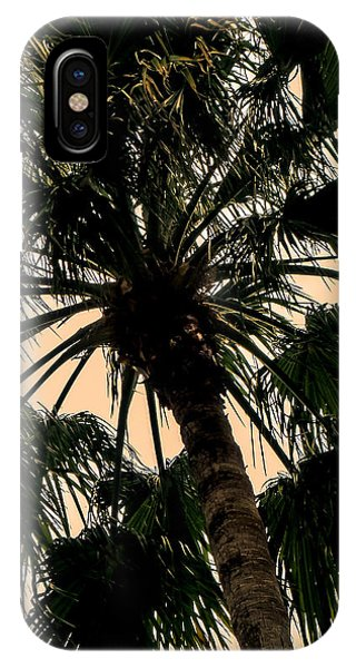 Palm Against The Sky IPhone Case