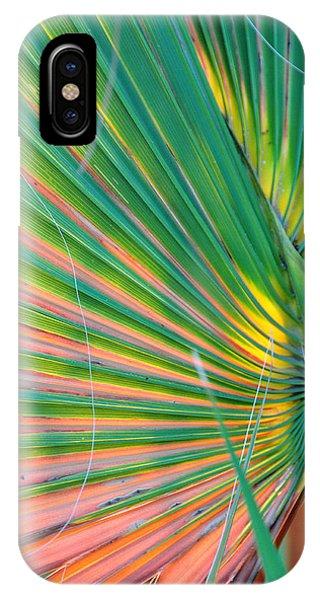 Palm Colors IPhone Case
