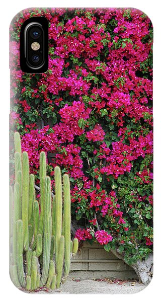 Palm Desert Blooms IPhone Case