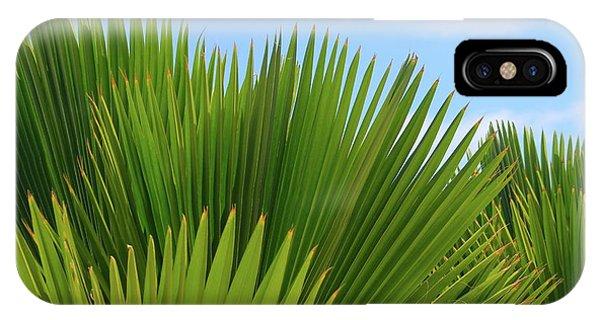 Palm Fans IPhone Case