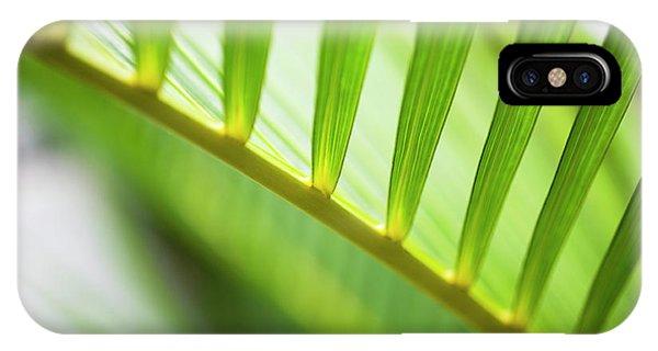Palm Greenery IPhone Case