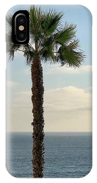 IPhone Case featuring the photograph Palm Over The Sea by Brian Eberly