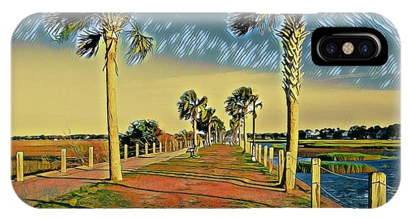 Palm Parkway IPhone Case