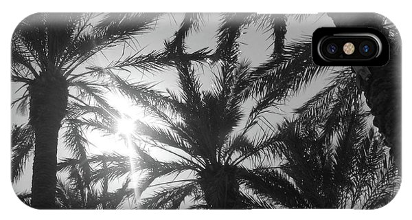 Palm Saturday IPhone Case