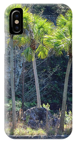 Palm Tree Island IPhone Case