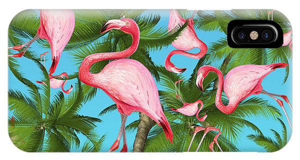 Animals iPhone Case - Palm Tree by Mark Ashkenazi