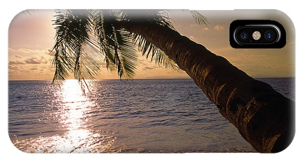 Palm Tree Over The Beach In Costa Rica IPhone Case