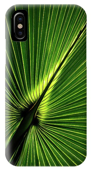 Palm Tree With Back-light IPhone Case
