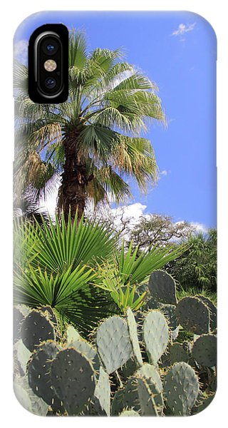 Palm Trees And Cactus IPhone Case