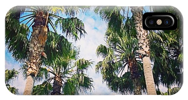 Picoftheday iPhone Case - #palm #trees Just Make Me #smile by Shari Warren