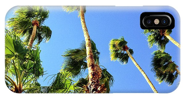Palm Trees Looking Up IPhone Case