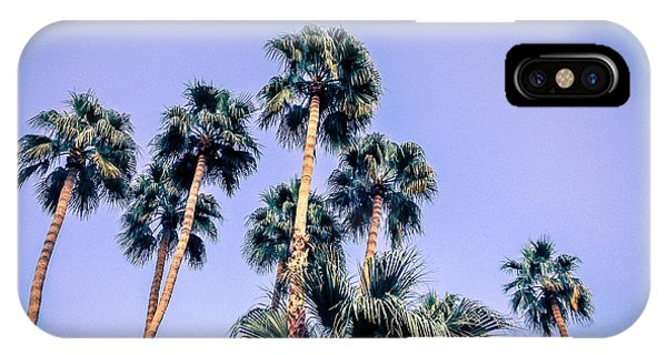 Palm Trees Palm Springs Summer IPhone Case