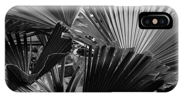 Palmetto In Black And White IPhone Case