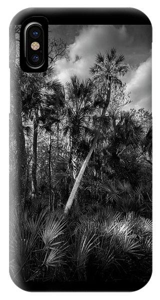 Palms And Palmettos IPhone Case