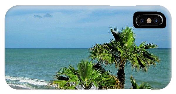 Palms At Vero Beach IPhone Case