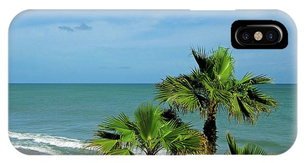 Palms At Vero Beach IPhone Case