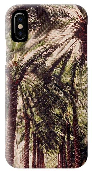 Avenue iPhone Case - Palmtree by Jeanette Korab