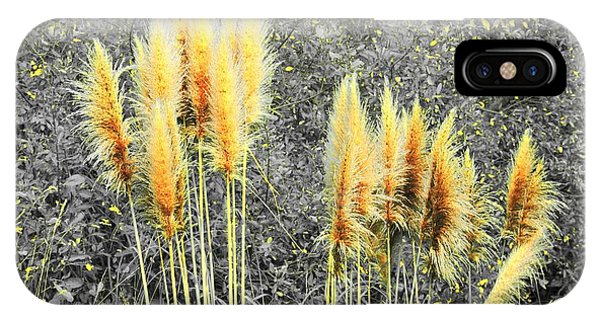 Pampas IPhone Case