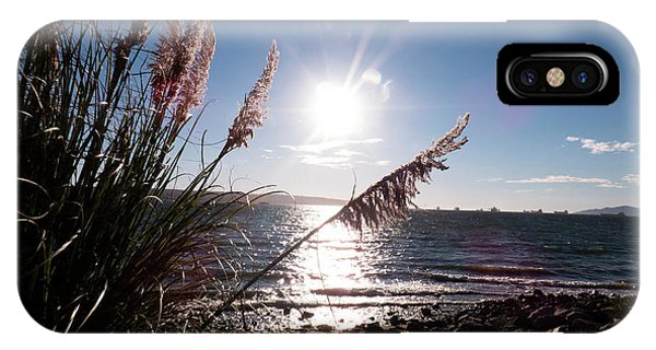 Pampas By The Sea IPhone Case