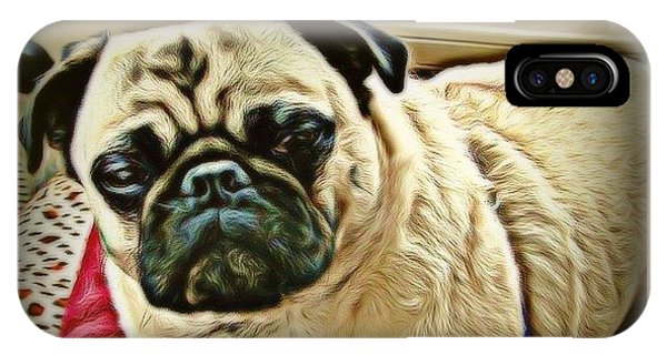 iPhone Case - Pampered Pug by Raven Hannah
