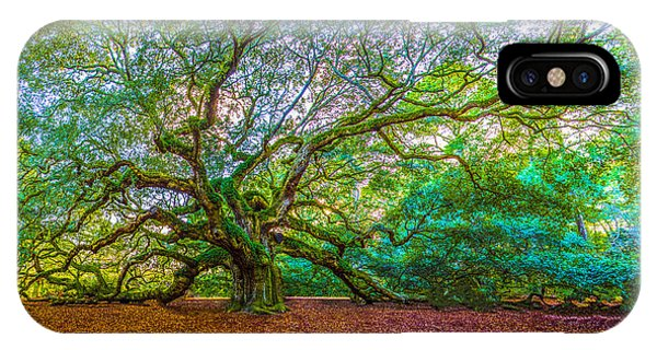 Panoramic Angel Oak Tree Charleston Sc IPhone Case
