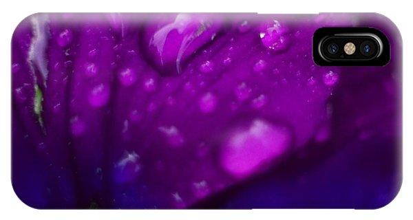 Pansy Rain Macro IPhone Case