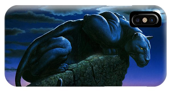 Full Moon iPhone Case - Panther On Rock by MGL Meiklejohn Graphics Licensing