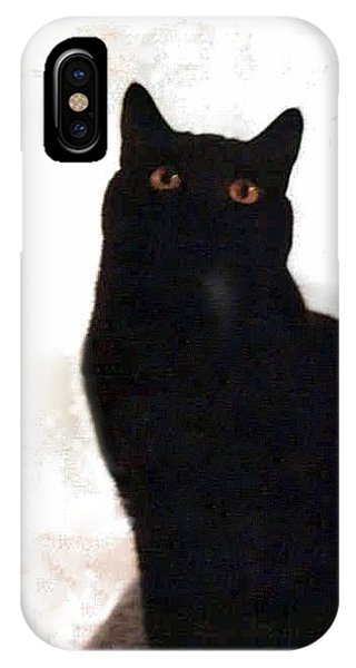Panther The British Shorthair Cat IPhone Case