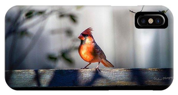 Papa Cardinal IPhone Case