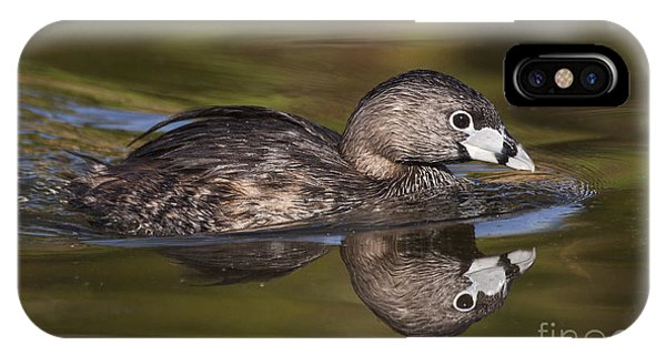Papago Park Grebe IPhone Case