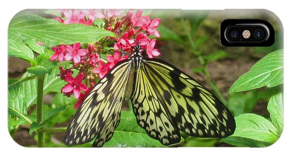 Paper Kite Butterfly IPhone Case